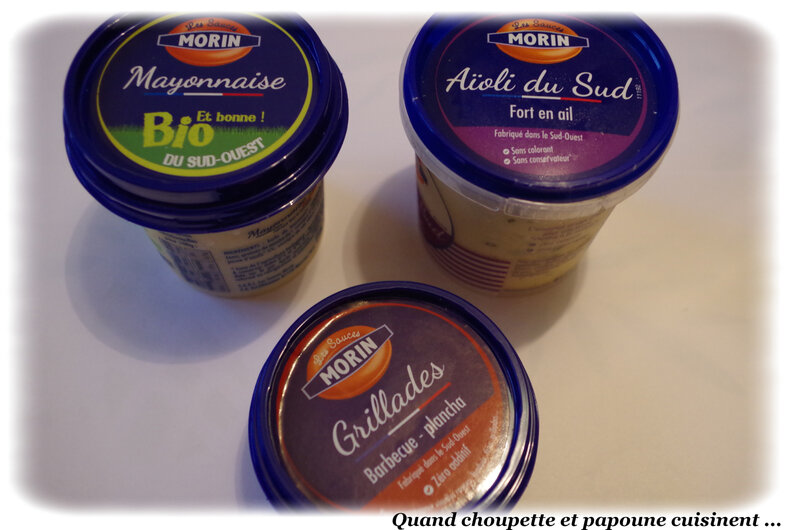 sauce monin-831