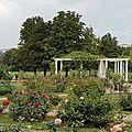 La roseraie du parc de la tete d'or de lyon...