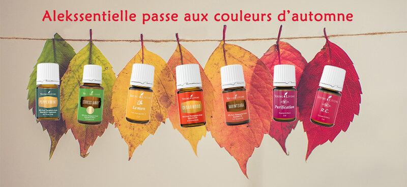 bandeau_automne