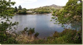 Glengariff harbour 4