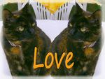 chats_double_LOVE