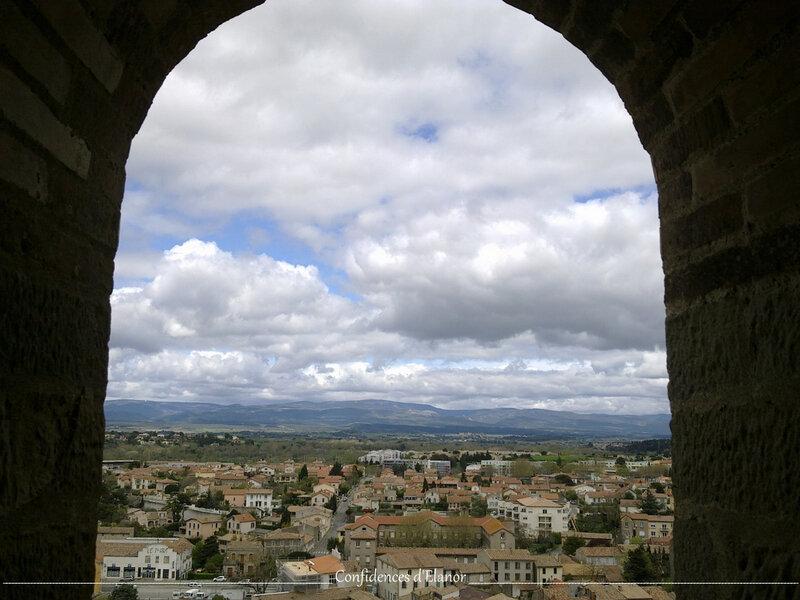 Carcassonne (9)