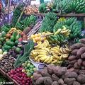 9049-Régimes-de-bananes