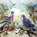 Couple de palombes ,aquarelle 41x33 papier 300g grain fin