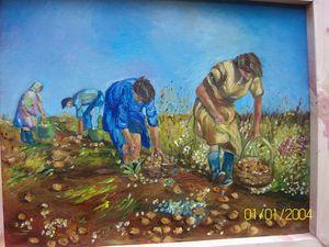 Les ramasseuses de pommes de terre
