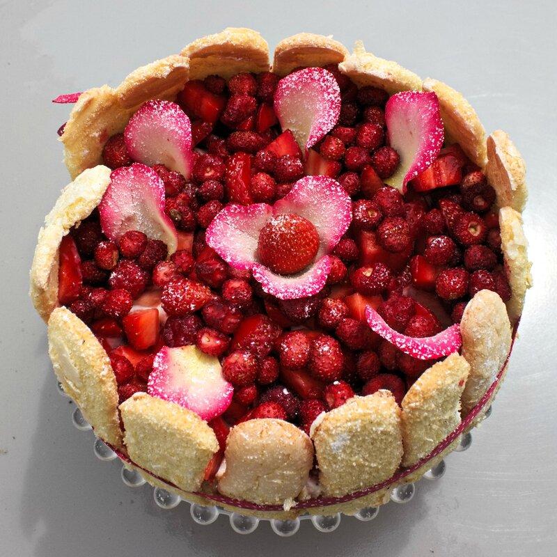 Charlotte fraises rose (3)