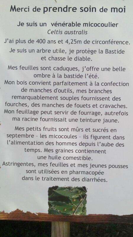 Bastide Marin 018