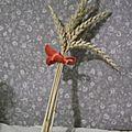 Juin, la saison des blés