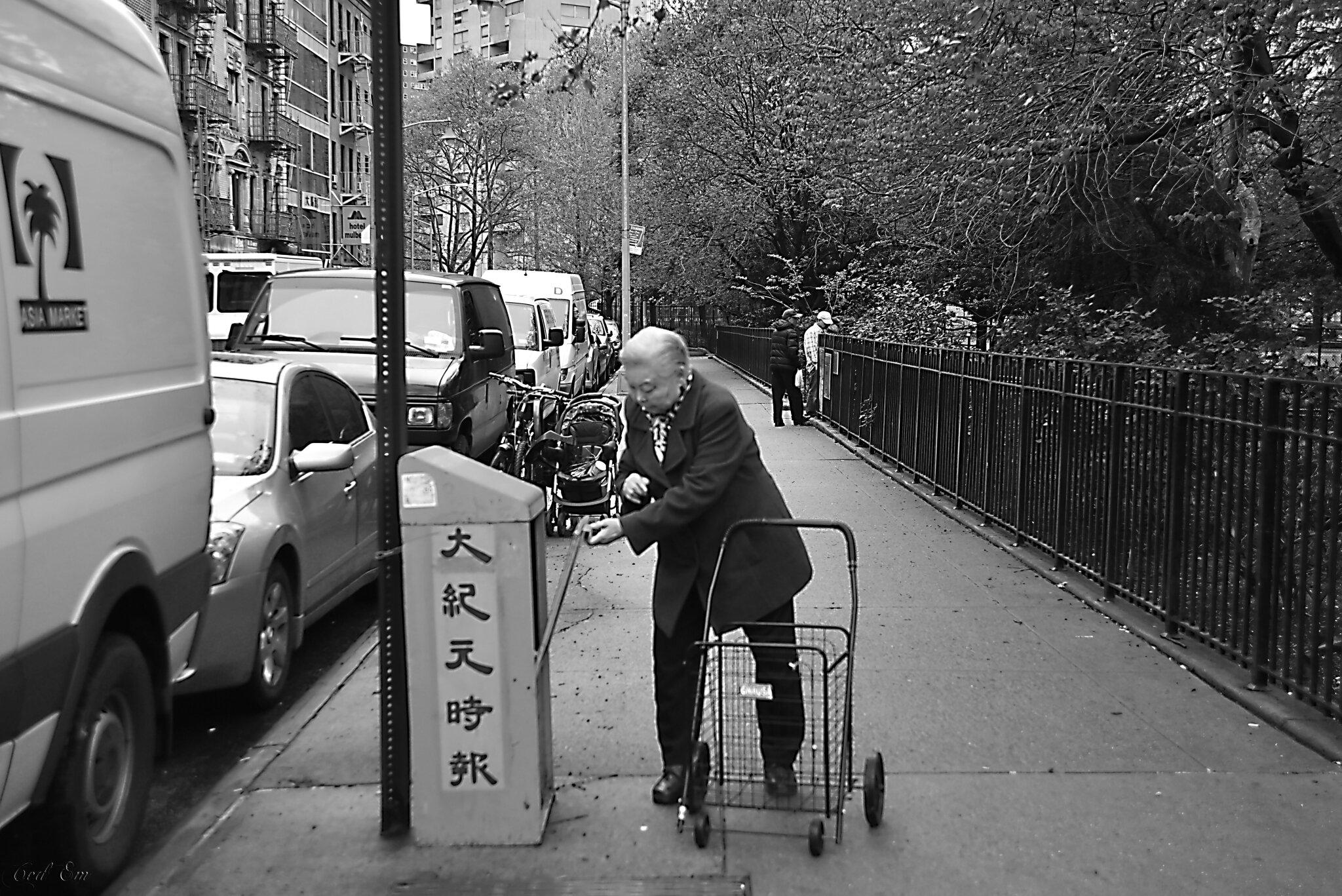 Chinatown NYC (3)