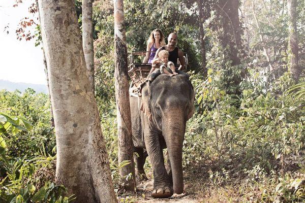 balade-en-éléphant