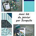 Maxi kit de janvier