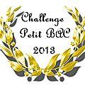 Challenge petit bac 2013 : les participants!