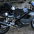 IMG_8937a