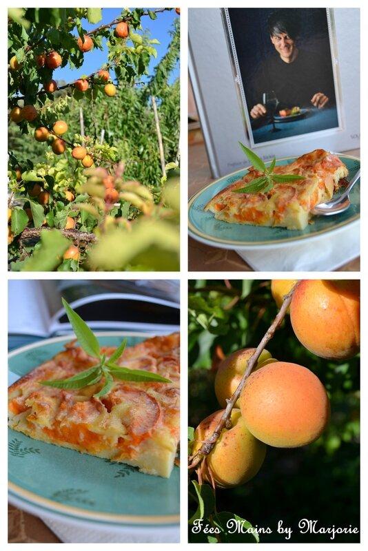 Clafoutis aux abricots et aux épices1