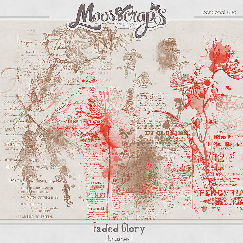 moos_fadedglory_bru_preview