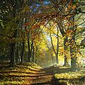 Un dimanche d'automne