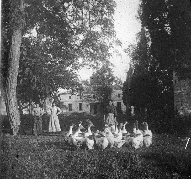 Chateau-Mondenard-LeChais-1900-363