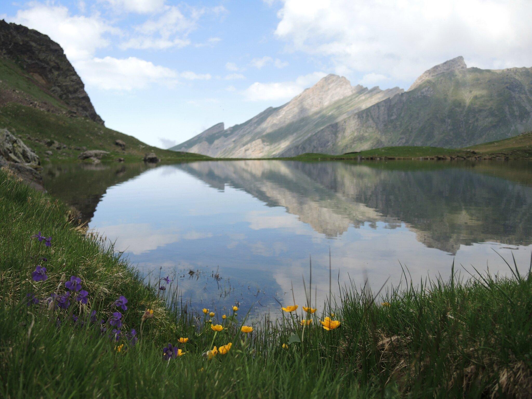 Gourette, R, Les trois Lacs, lac d'Anglas, fin de journée, fleurs