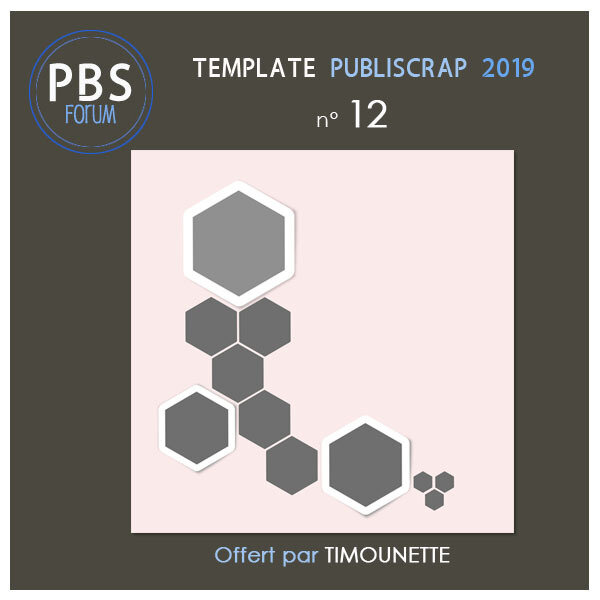 Preview Template PBS 2019-12 by Timounette