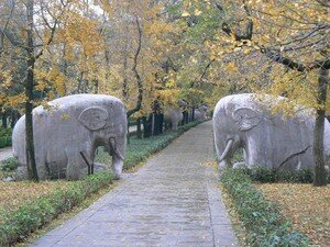 ___Purple_Mountain_______Ming_Tomb____Sacred_Path___Elephants