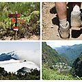 Randonnée Pico Ruivo