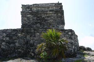 mexique août 2011 714