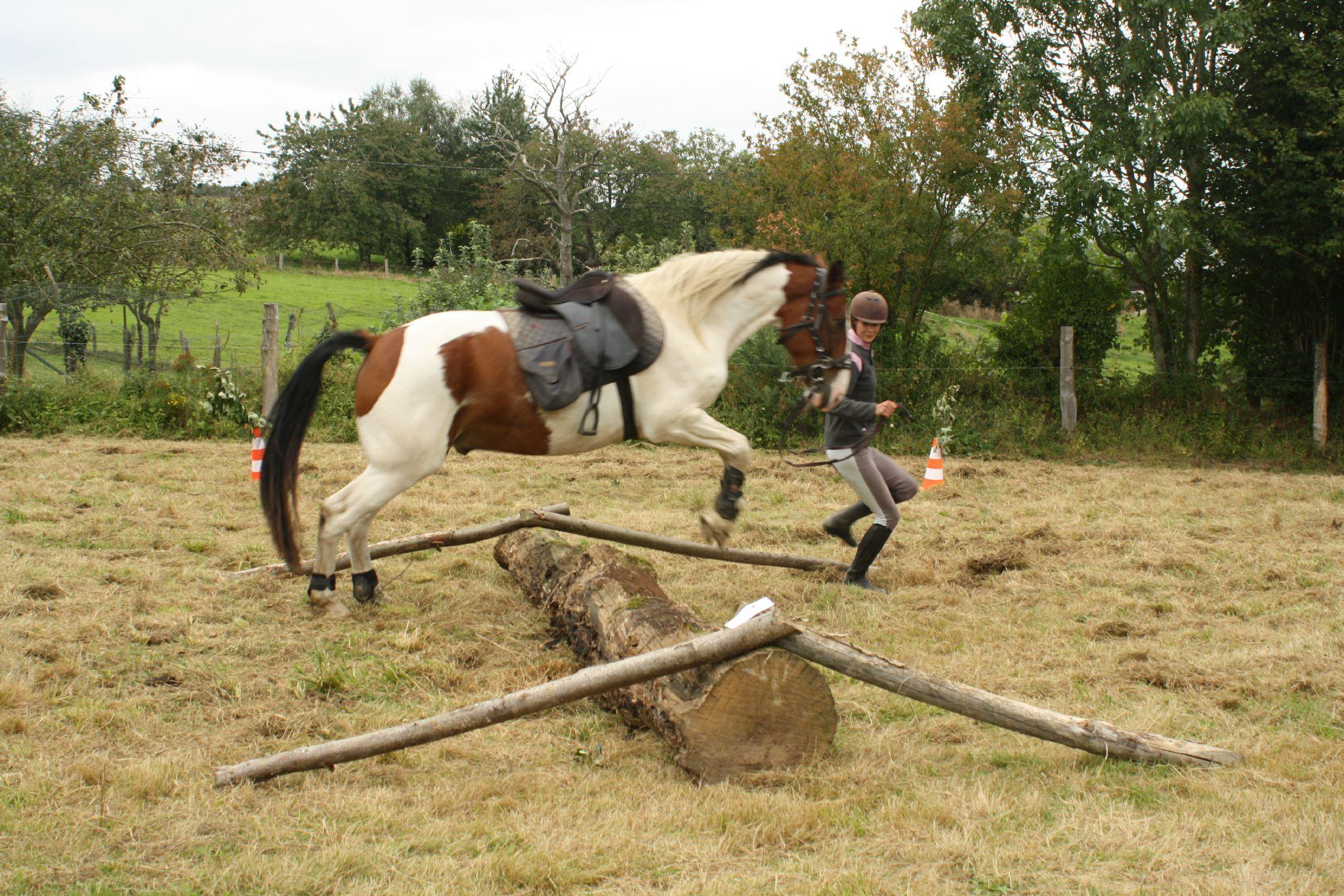 équitation de pleine nature - rallye équestre (57)