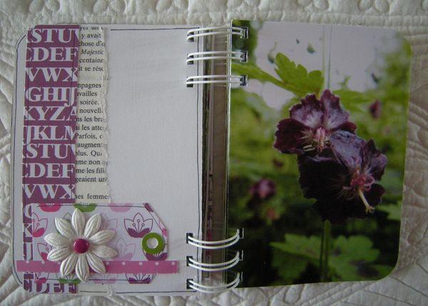 Les_fleurs_de_Valloires__24_