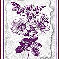 * carte tampon fleurs