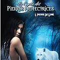 le-cycle-des-pierres-protectrices-tome-1-pierre-de-lune