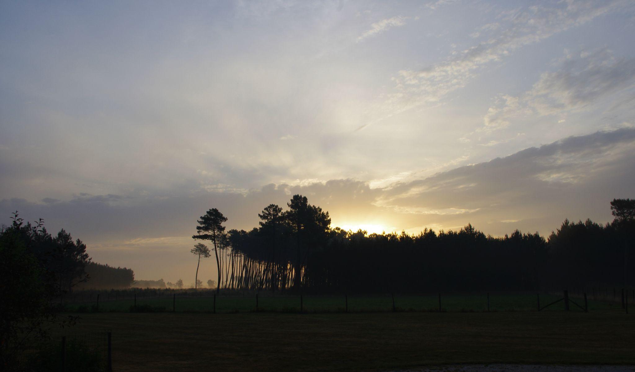 l'aube à sainte-Hélène