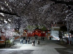 Canalblog_Tokyo03_02_Avril_2010_Vendredi_058