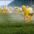 Les pesticides en marche !...
