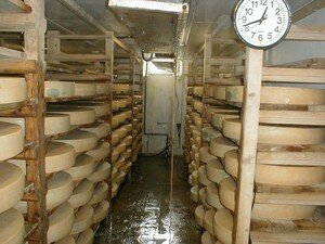 fromagerie_cave