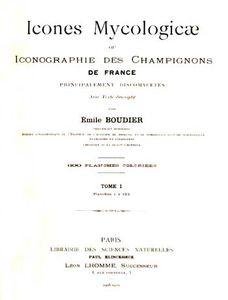 Boudier2