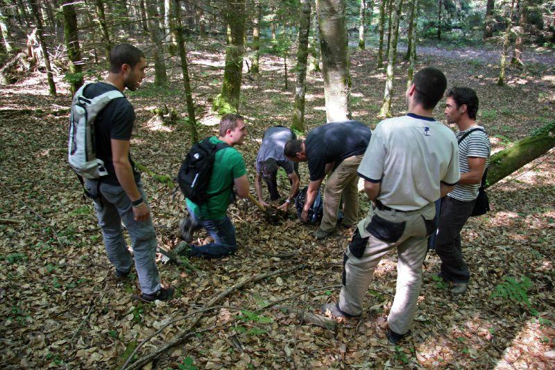 IMG_8856 Le Groupe au travail