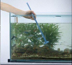 nettoyage_aquarium