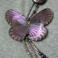 Et un papillon de plus