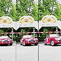 2009-Annecy-Tulipes-Alfa Romeo-1900 SS-07