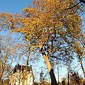 45 - Parc du château Conti