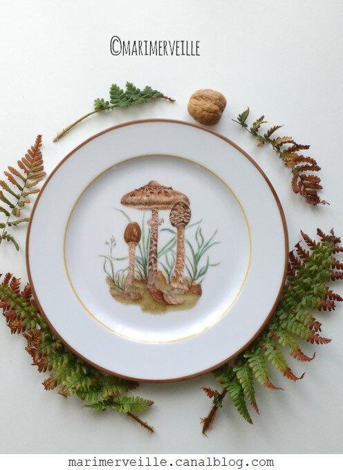Assiette aux Lépiotes élevées - marimerveille