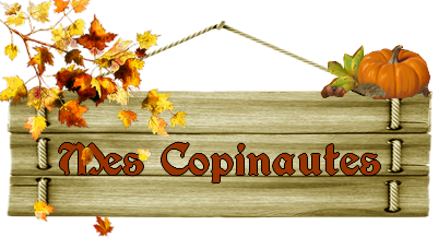 copinautes