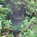 nyiragongo_montée au volcan_fissures des zone des coulées de 2002_005