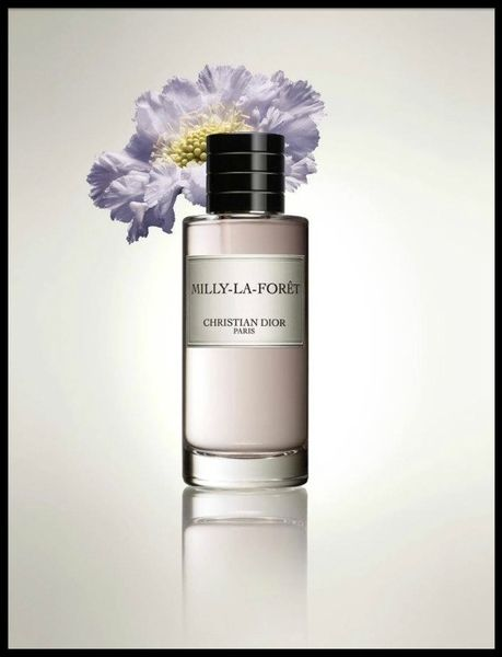 christian dior milly la foret 1