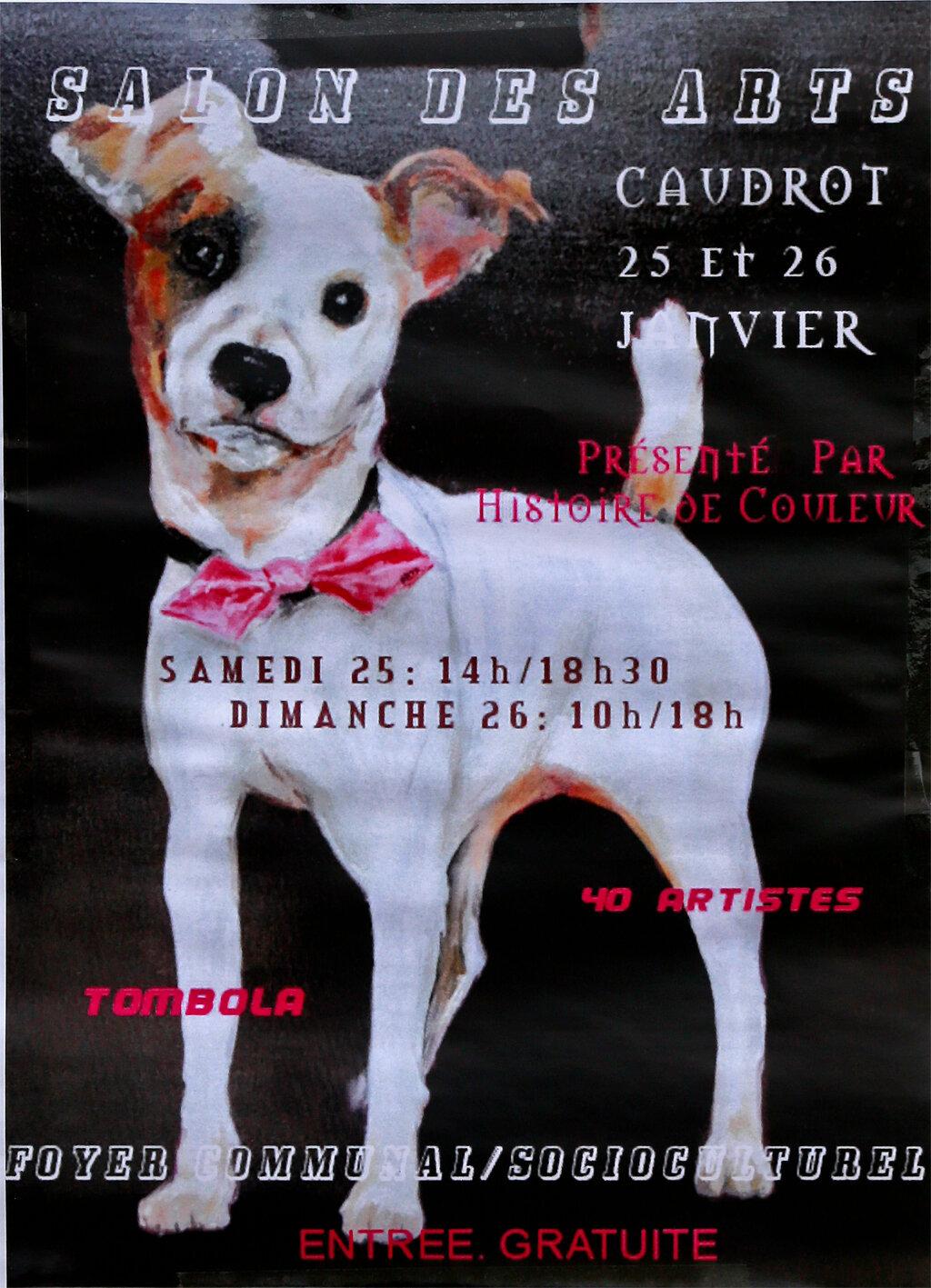 Affiche Salon des Arts 25-26 janvier 2020