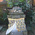 010_10189 Ubud palais imperial offrande