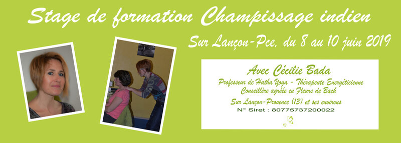 CommunicationFormationChampissage14x5Ps20190305
