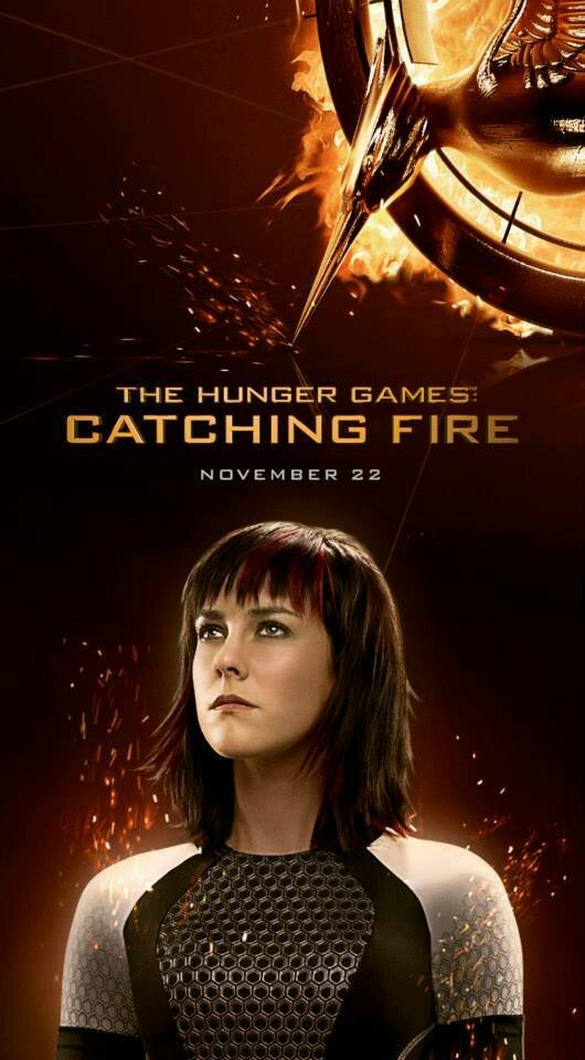 Johanna Catching Fire poster
