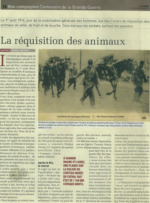 guerre animal 1