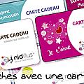 Ouverture du nouveau site nidillus.fr